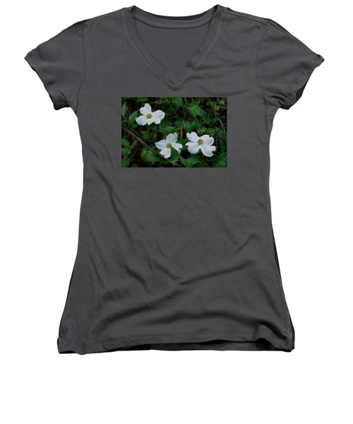 Women's V-Neck T-Shirt (Junior Cut) featuring the photograph Spring Time Dogwood by Mike Eingle