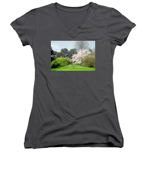 Women's V-Neck T-Shirt (Junior Cut) featuring the photograph Spring Treasures by Diana Angstadt