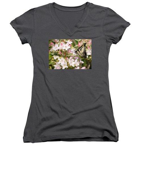 Spring Visit Women's V-Neck T-Shirt
