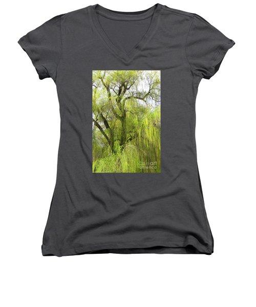 Spring Willow Women's V-Neck T-Shirt (Junior Cut)