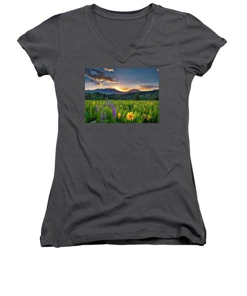Spring's Delight Women's V-Neck T-Shirt (Junior Cut) by Leland D Howard