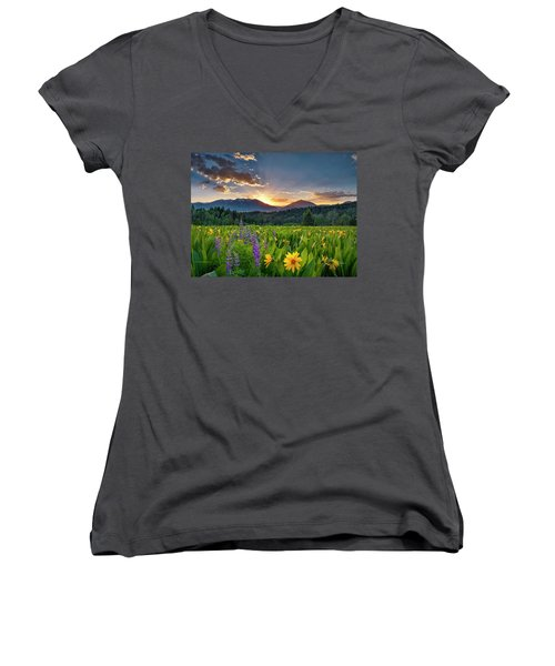 Spring's Delight Women's V-Neck T-Shirt