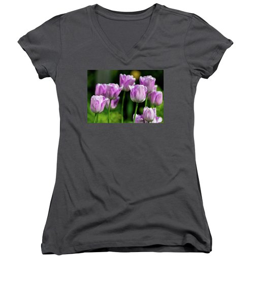 Springtime In Stratford Women's V-Neck
