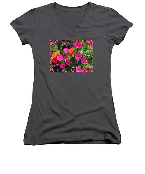 Springtime On The Farm Women's V-Neck