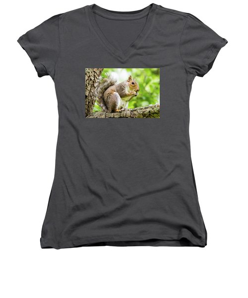 Squirrel Eating On A Branch Women's V-Neck