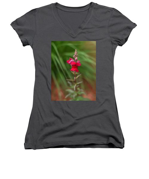 St. Johns Park Flower 872 Women's V-Neck