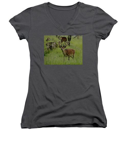 Stag Of The Herd. Women's V-Neck (Athletic Fit)