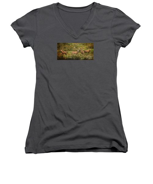 Stag Party The Boys Women's V-Neck T-Shirt (Junior Cut) by Linsey Williams