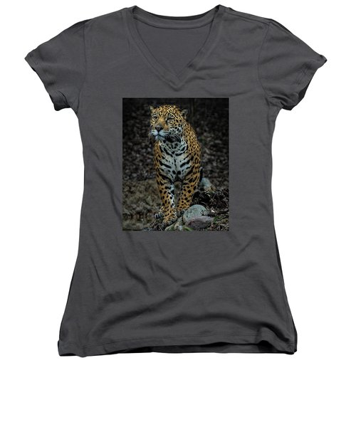 Women's V-Neck T-Shirt (Junior Cut) featuring the photograph Stalking by Phil Abrams