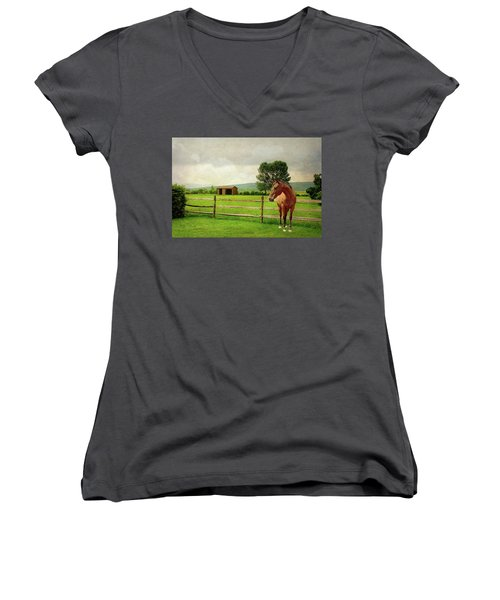 Women's V-Neck T-Shirt (Junior Cut) featuring the photograph Stallion At Fence by Diana Angstadt
