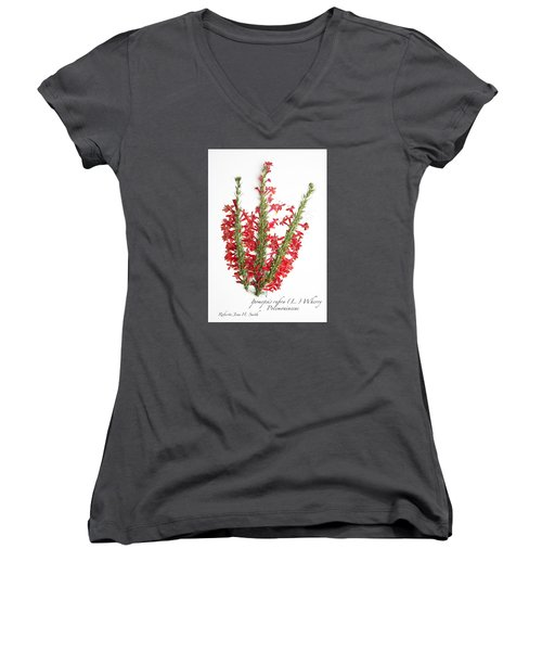 Standing-cypress Women's V-Neck T-Shirt