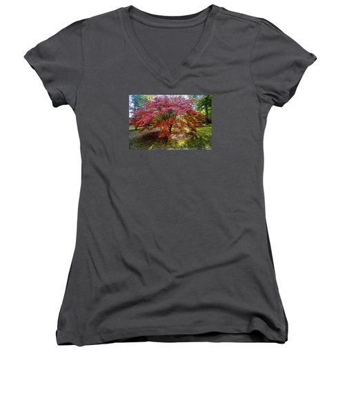 Standing Out From The Crowd Women's V-Neck (Athletic Fit)