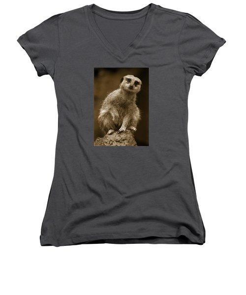 Standing Sentry Women's V-Neck T-Shirt
