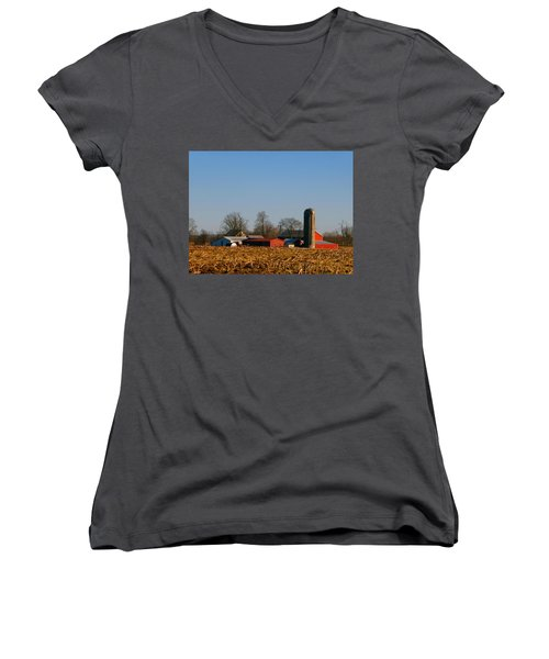Standing Still Patiently Waiting Women's V-Neck T-Shirt (Junior Cut) by Tina M Wenger
