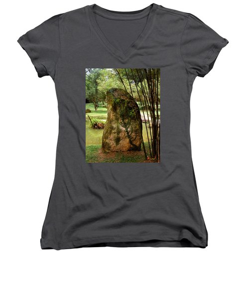 Standing Stone With Fern And Bamboo 19a Women's V-Neck