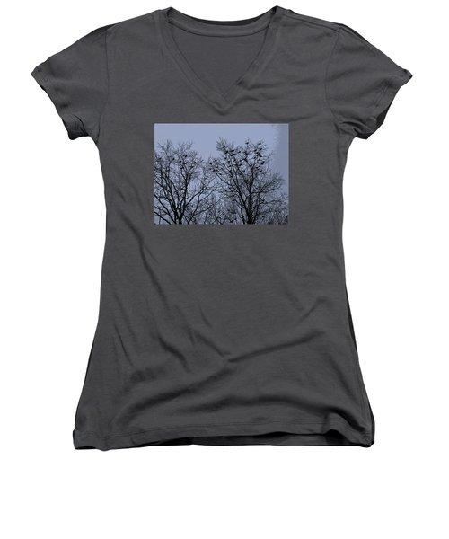 Starlings Women's V-Neck T-Shirt
