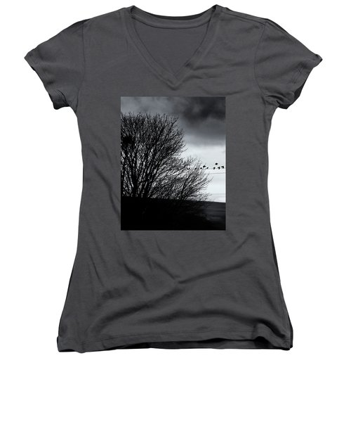Starlings Roost Women's V-Neck T-Shirt