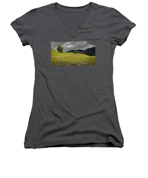 Stormy Fields Of Yellow Women's V-Neck