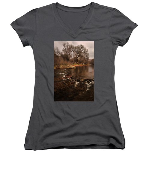 Stream And Tree Women's V-Neck (Athletic Fit)