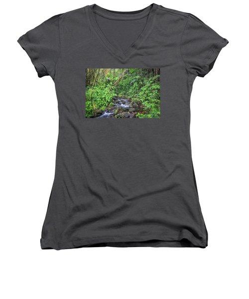 Stream In The Rainforest Women's V-Neck