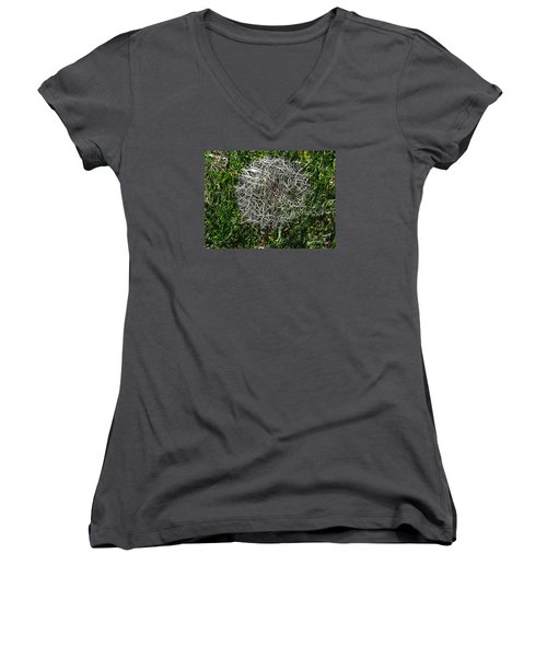 String Theory Dandelion Women's V-Neck T-Shirt (Junior Cut) by Craig Walters