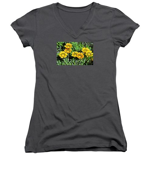 Women's V-Neck T-Shirt (Junior Cut) featuring the photograph Striped Daisies--film Image by Matthew Bamberg