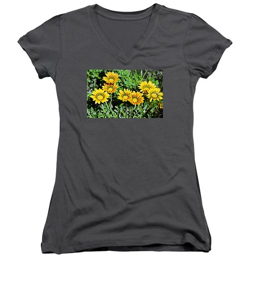 Striped Daisies--film Image Women's V-Neck