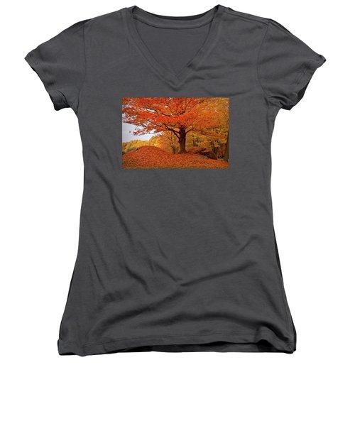 Sturdy Maple In Autumn Orange Women's V-Neck