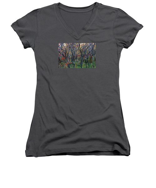 Sumac Grove Women's V-Neck (Athletic Fit)
