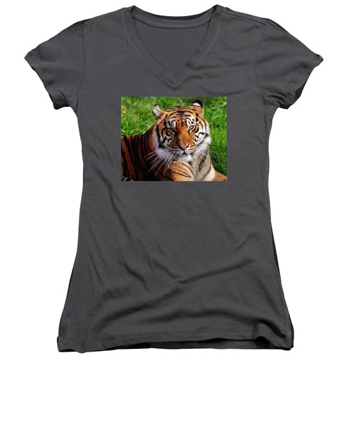 Sumatran Tiger  Women's V-Neck (Athletic Fit)
