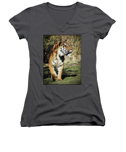Sumatran Tiger  Women's V-Neck