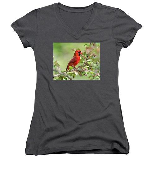 Summer Cardinal Women's V-Neck