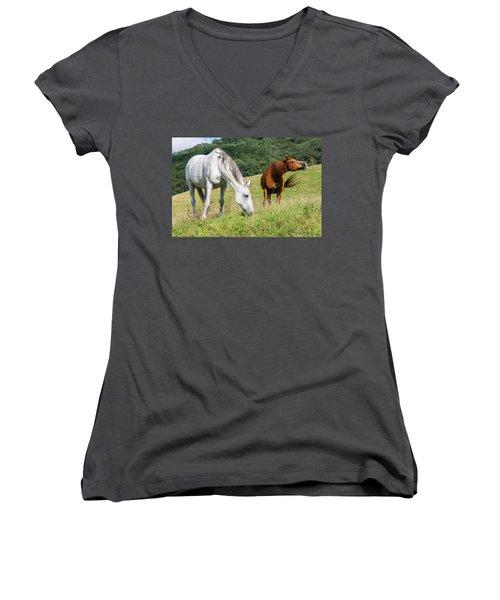 Summer Evening For Horses Women's V-Neck