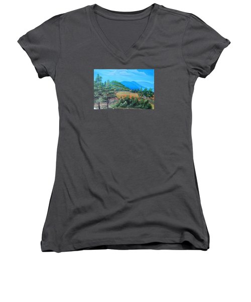 Summer Fields 2 Women's V-Neck T-Shirt (Junior Cut) by Remegio Onia