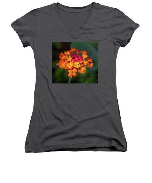 Summer Floral Colors Women's V-Neck