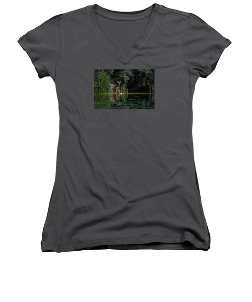Summer Morning Walk Women's V-Neck T-Shirt (Junior Cut) by Ernie Echols
