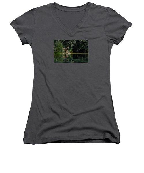 Summer Morning Walk Women's V-Neck T-Shirt