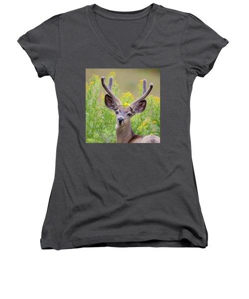 Summer Mule Deer Women's V-Neck T-Shirt