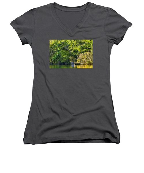 Summertime Women's V-Neck T-Shirt (Junior Cut) by Swank Photography