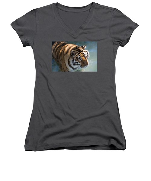 Women's V-Neck T-Shirt featuring the photograph Summertime Wading by Colleen Coccia