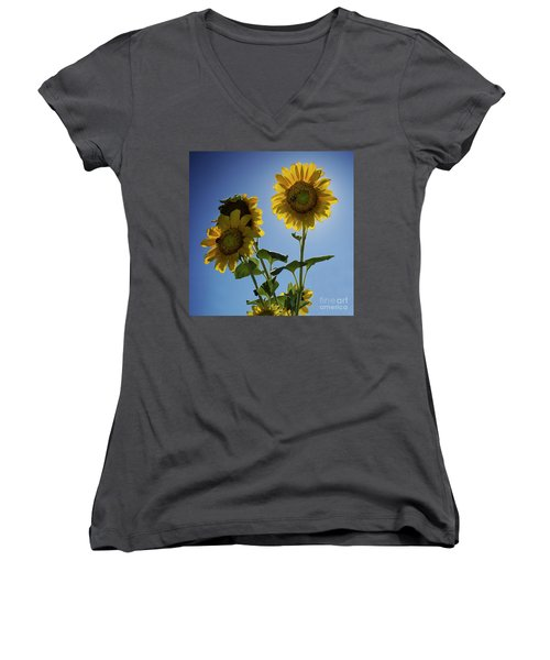 Sun Flowers Women's V-Neck T-Shirt (Junior Cut) by Brian Jones