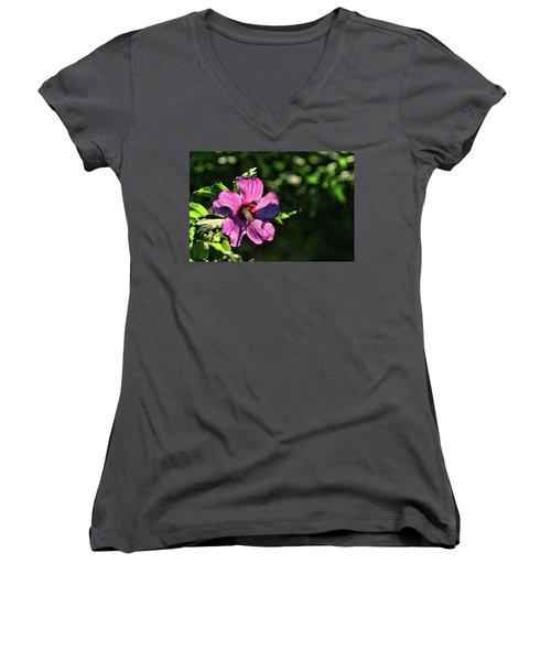 Sun Kissed Women's V-Neck T-Shirt