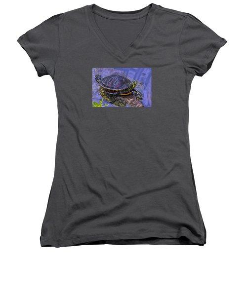 Sunbathing Turtle Women's V-Neck