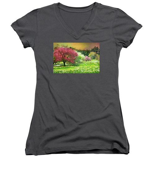 Women's V-Neck T-Shirt (Junior Cut) featuring the photograph Sunday My Day by Diana Angstadt