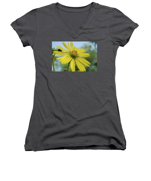 Sunflower Close-up Women's V-Neck
