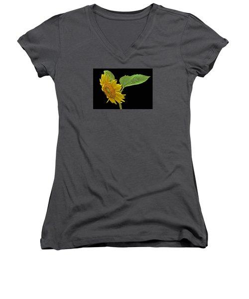 Sunflower Women's V-Neck T-Shirt (Junior Cut) by Don Durfee