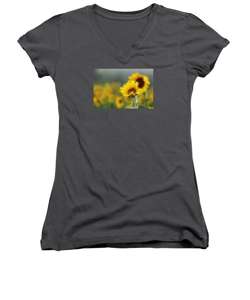 Sunflower Field Women's V-Neck T-Shirt (Junior Cut) by Karen McKenzie McAdoo