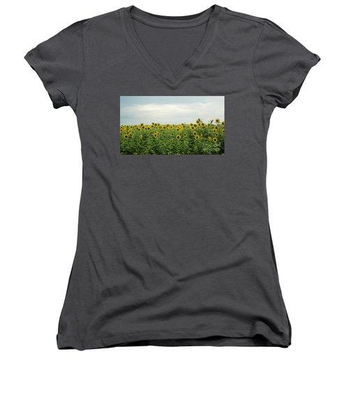 Sunflower Field Women's V-Neck T-Shirt