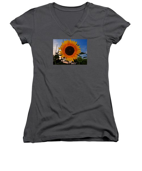 Sunflower In The Evening Women's V-Neck T-Shirt (Junior Cut) by Ernst Dittmar