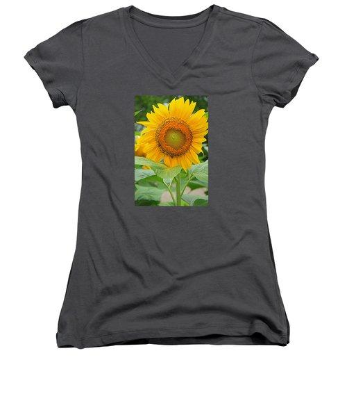 Sunflower Women's V-Neck T-Shirt (Junior Cut) by Ronald Olivier